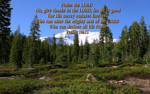 Beauty in Nature Bible Verses http://www.pic2fly.com/Beauty+in+Nature ...
