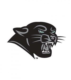 Pink Panther Head Logo Mugs