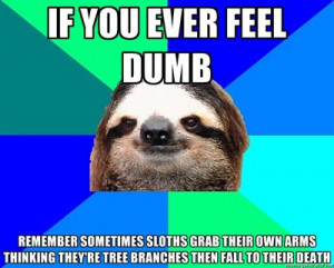 Deez Nuts Meme Sloth Sloths