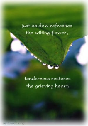 ... refreshes the wilting flower, tenderness restores the grieving heart
