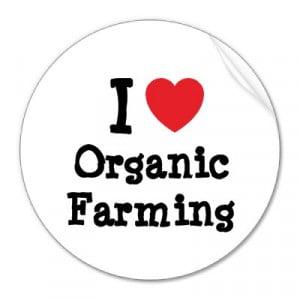 Organic Farming Advantages and Disadvantages