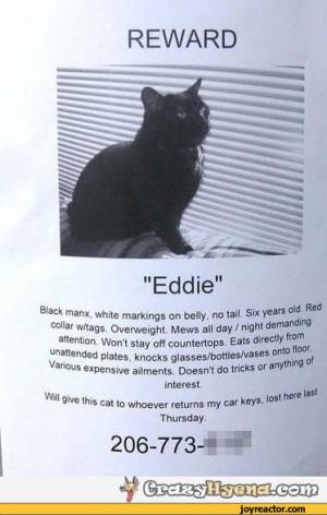 Has anyone seen my car keys? / missing cat :: car keys :: fine print ...