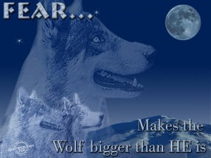 Inspirational Wolf Quotes Fear makes the wolf bigger
