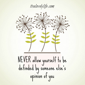 NEVER allow yourself to be defined by someone else's opinion of you ...