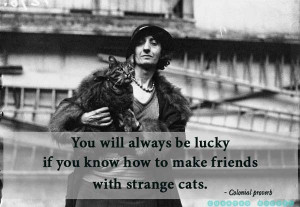 Proverb cat quotes