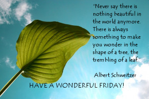 Friday Beautiful Good Morning Quote ~ Never say
