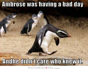 Bad Day Quotes I Dont Care Quotes