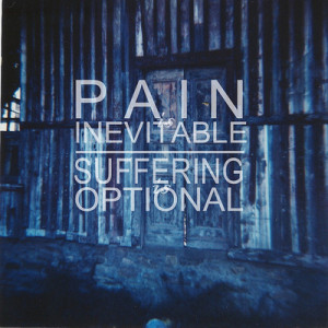 pain and suffering quotes insurance