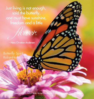 "Spirit"" Beautiful Butterfly Photography and Inspirational Quotes ..."