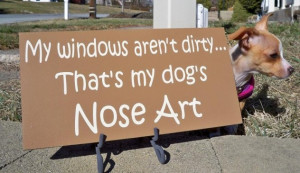 If You Own a Dog, Your Windows Are Always Clean