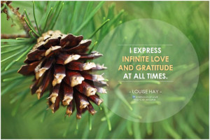 express infinite love and gratitude at all times. - Louise Hay