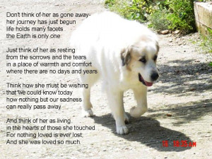 dogs passing away quotes