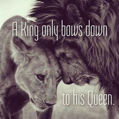 Lioness Quotes