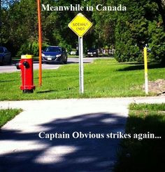 ... captain obvious meanwhile in canada funny quotes humor obvious strike