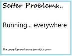 # volleyball # volleyball problems Sooooooooooooo true!!!! Last ...