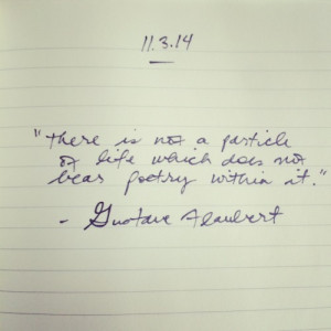 gustave flaubert quote, poetry, particles and life