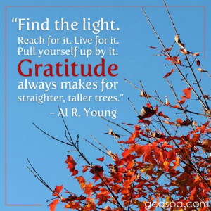 Find the Light, #quotes