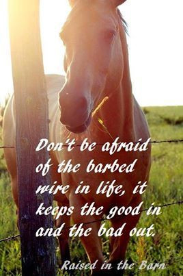 Raised in the Barn Quote