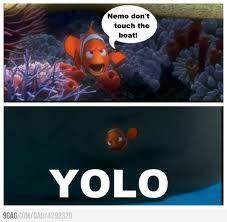 funny yolo nemo - yolo Photo