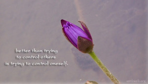 Control quotes - Better than trying to control others is trying to ...