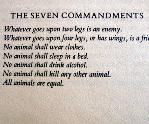 Quotes Animal Farm Books George Orwell Scans