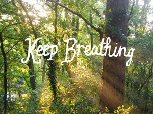 breath forest nature quotes sunlight text