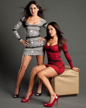 The Bella Twins Image