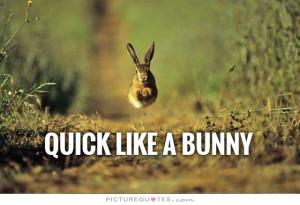 Naughty Happy Bunny Quotes