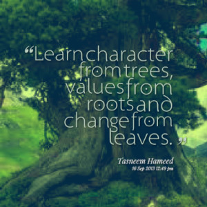 Learn character from trees, values from roots and change from leaves.