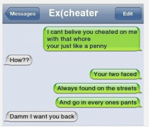 15 WTF Texts That Will Show Cheating   Minion Fans   Page 4