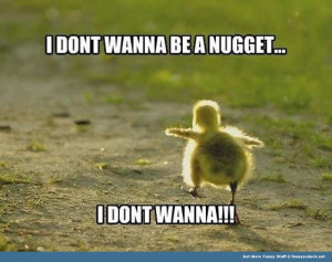 baby chick nugget don't wanna animal funny pics pictures pic picture ...