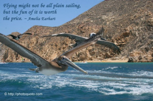 Flying might not be all plain sailing, but the fun of it is worth the ...