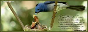 Tags: BABY , birds , spring ,