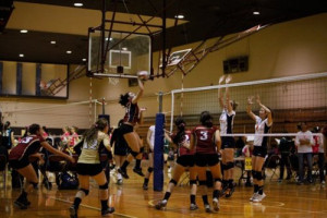 Volleyball Outside Hitter Quotes