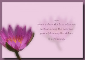 One who is calm in the face of chaos… Awakening quote