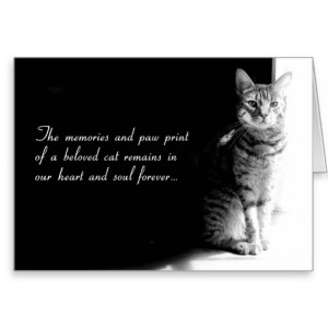 sympathy_card_for_the_loss_of_a_beloved_pet_cat ...