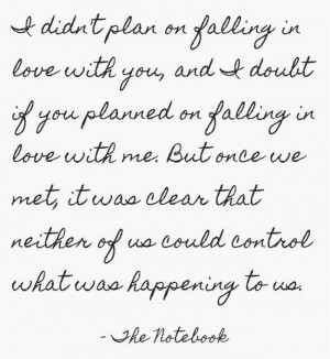 didn't plan on falling in love with you
