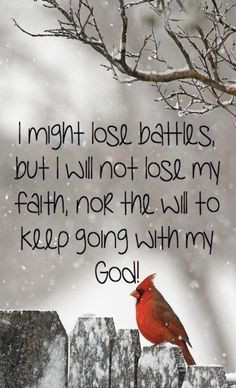 might lose battles but I will not lose my faith nor the will to ...