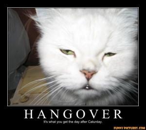 ... s1.static.gotsmile.net/images/2011/05/02/hangover-cat_130434770642.jpg
