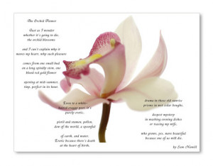 poems poetry and orchids Explore pmc jazzed's board poems on pinterest | see more ideas about poem, poems and poetry  items similar to quilled tropical orchid on etsy.