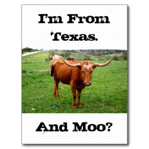 Texas Longhorn With Funny Texas Saying Post Cards