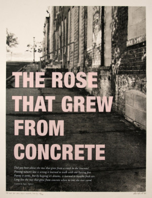 The Rose that grew from concrete - Tupac Shakur's Poetry book.