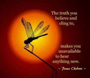 Pema Chodron - Concept: Beliefs create realities. What would be ...