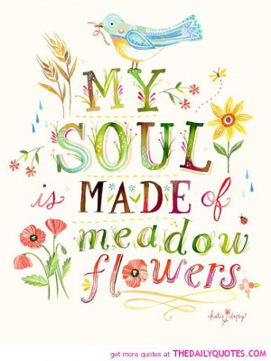 soul-made-of-meadow-flowers-katire-daisy-quotes-sayings-pictures.jpg