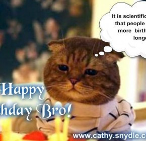 funny happy birthday brother quotes funny happy birthday brother ...
