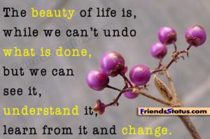 understanding life quotations