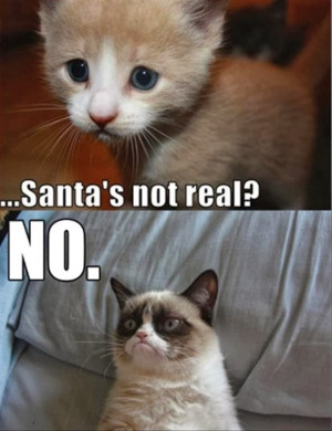 no to of grumpy cat christmas grumpy cats christmas meme grumpy cat ...