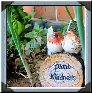 the porch at an old apartment....Plant Kindness Y'all!! Quote for July ...
