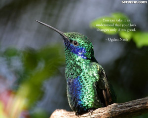 luck quotes | best luck quotes | awesome luck quotes | luck wallpapers ...