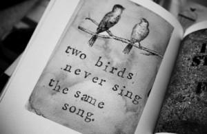 Birds Quotes Gaphics